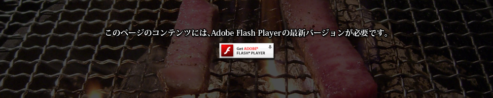 Adobe Flash Player ���擾